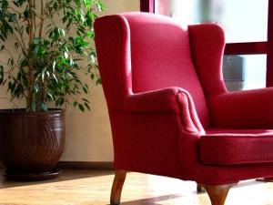 Roter Sessel mit Pflanze und Fenster im Hintergrund